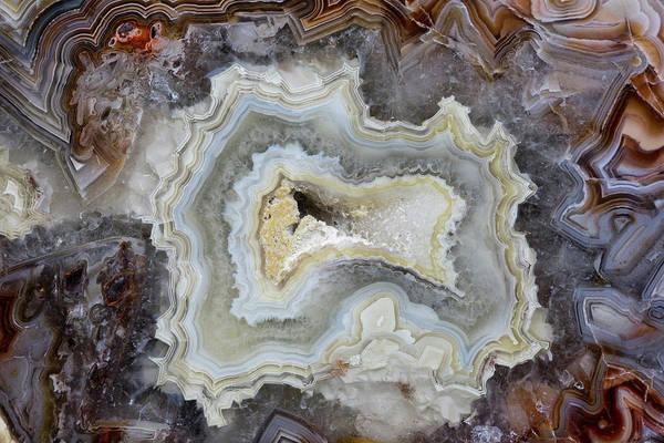 Agate Photograph - Banded Agate, Sammamish, Washington by Darrell Gulin