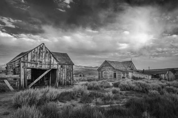Wall Art - Photograph - Bodie by Cat Connor