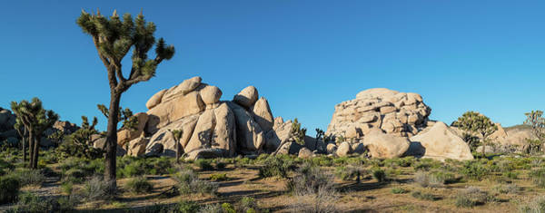 Riverside California Photograph - Boulders In A Desert, Joshua Tree by Panoramic Images