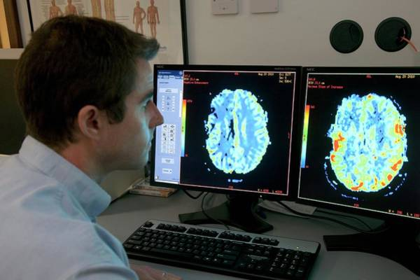 2d Photograph - Brain Ct Scanning by Mark Thomas/science Photo Library