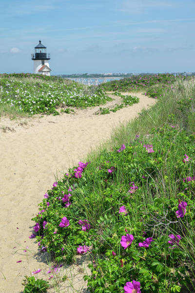 Wall Art - Photograph - Brant Lighthouse, Nantucket Harbor by Lisa S. Engelbrecht