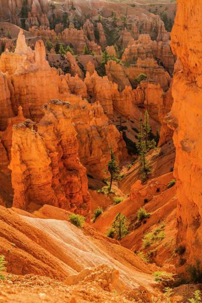 Crevice Photograph - Bryce Canyon National Park, Utah by Jolly Sienda