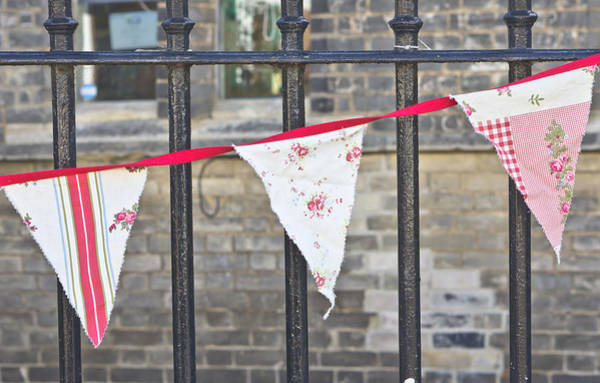 Bunting Photograph - Bunting by Tom Gowanlock