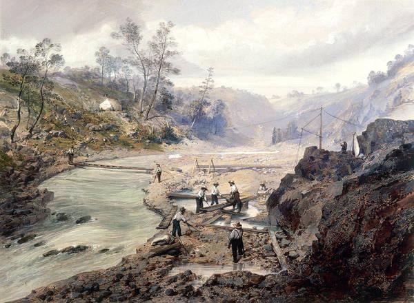 Wall Art - Painting - California Gold Rush, 1853 by Granger