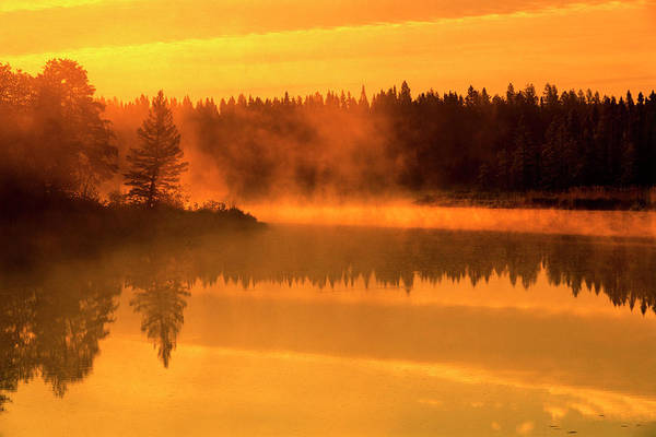 Boreal Forest Photograph - Canada, Manitoba by Jaynes Gallery