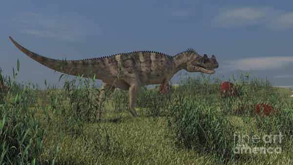 Digital Art - Ceratosaurus Hunting In Prehistoric by Kostyantyn Ivanyshen
