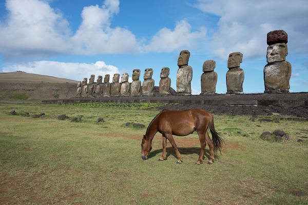 Wall Art - Photograph - Chile, Easter Island, Hanga Nui by Cindy Miller Hopkins