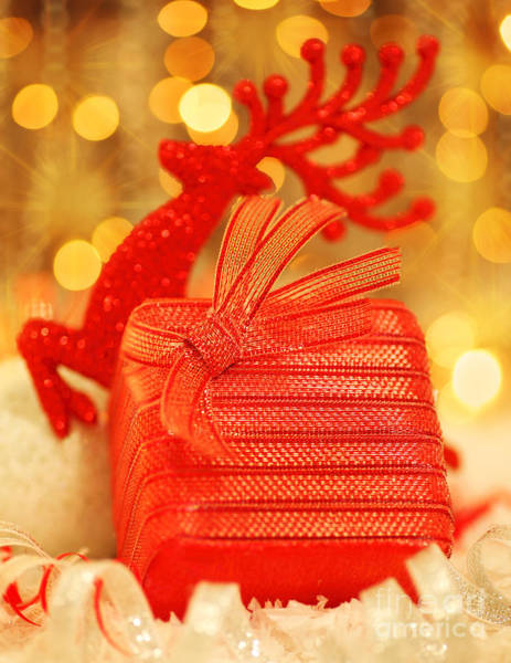 Adorn Photograph - Christmas Gift by Anna Om