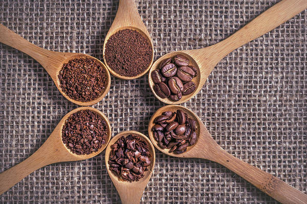 Wall Art - Photograph - Coffee Beans And Grinds On Wooden Spoons by Ktsdesign/science Photo Library