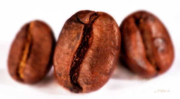 Wall Art - Photograph - 3 Coffee Beans by Iris Richardson