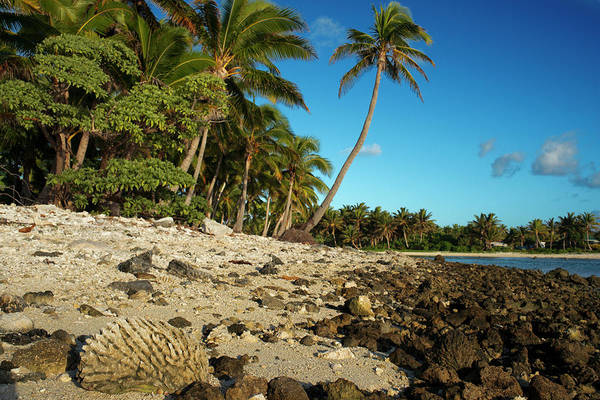 Rarotonga Photograph - Cook Islands In Polynesia by Sergi Reboredo - Vwpics