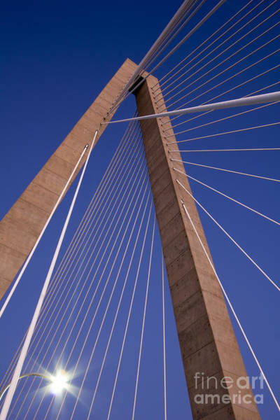 Cable-stayed Bridge Photograph - Cooper River Bridge Charleston Sc by Dustin K Ryan