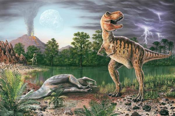 Wall Art - Photograph - Cretaceous-tertiary Extinction Event by Richard Bizley