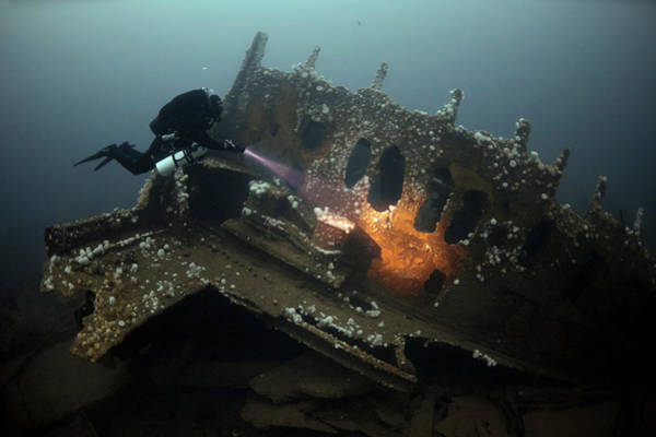 Wall Art - Photograph - Diver Exploring The Rms Justicia by Steve Jones