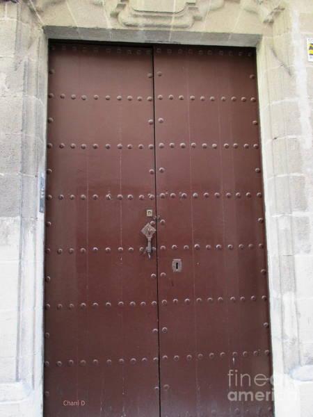 Photograph - Door In Jerez by Chani Demuijlder