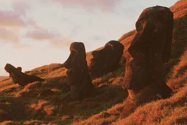 Wall Art - Photograph - Easter Island Statues by David Nunuk/science Photo Library