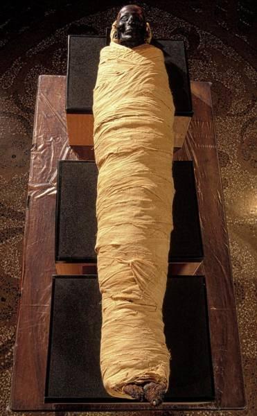 Wall Art - Photograph - Egyptian Mummy by Patrick Landmann/science Photo Library