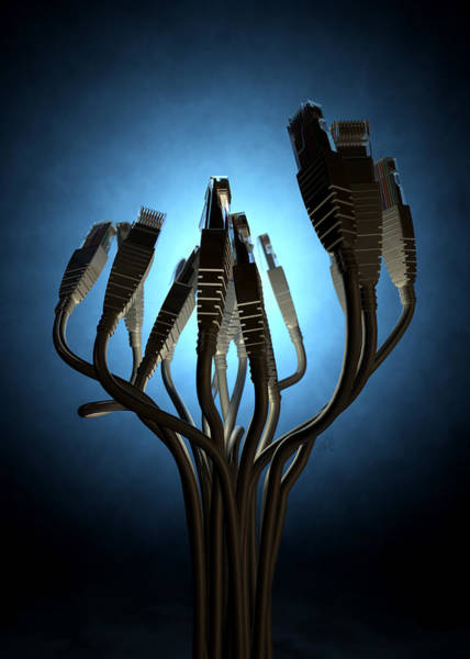 Cable Digital Art - Ethernet Abstract Silhouettes by Allan Swart