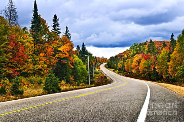Photograph - Fall Highway by Elena Elisseeva