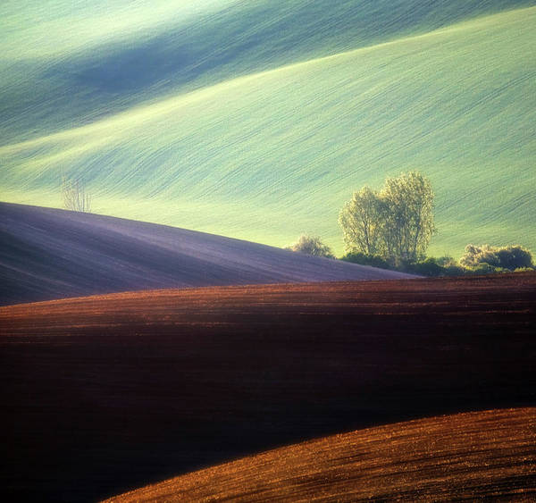 Contrast Wall Art - Photograph - Fields... by Krzysztof Browko