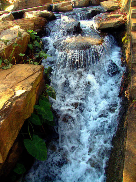 Photograph - Finlay Park Waterfall 2 by Lisa Wooten
