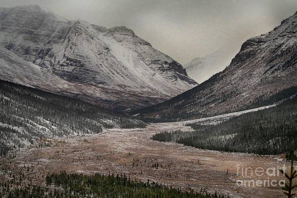 Photograph - First Snow  by Karla Weber