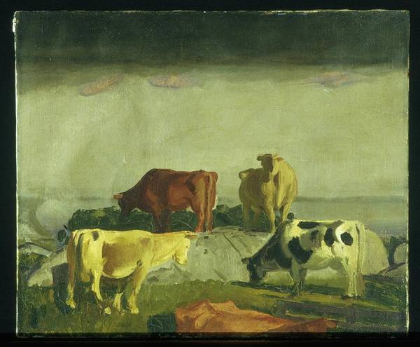 Central America Painting - Five Cows by George Bellows