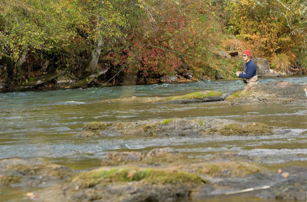 Rogue River Wall Art - Photograph - Fly Fishing For Steelhead Trout by Justin Bailie