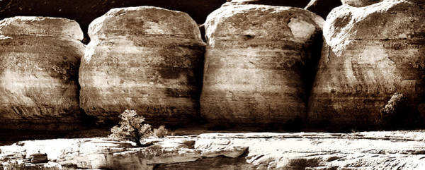 Photograph - Four Boulders by Marilyn Hunt