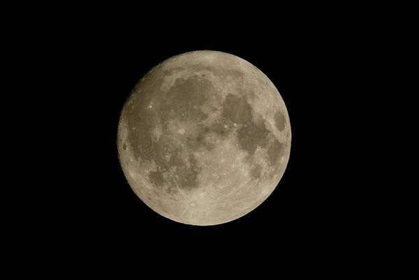 Astrophysical Wall Art - Photograph - Full Moon by Detlev Van Ravenswaay