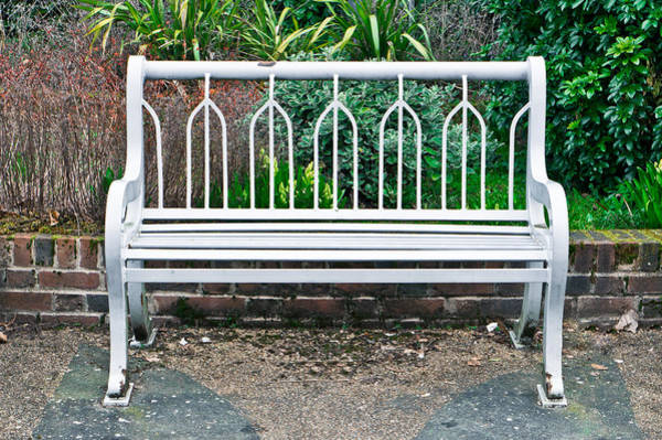 Metal Furniture Photograph - Garden Bench by Tom Gowanlock