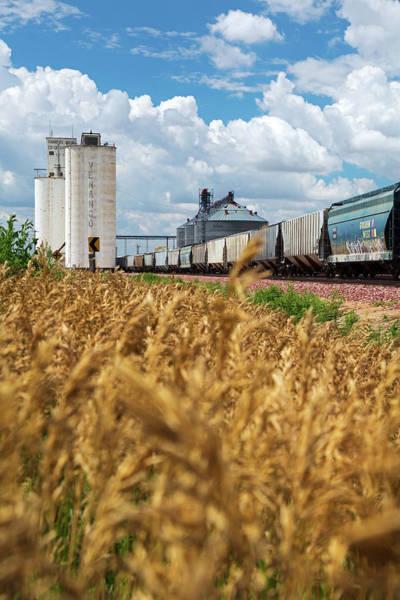 Grain Elevator Photograph - Grain Elevators And Railway by Jim West