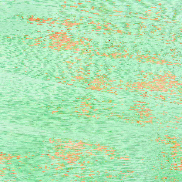 Wall Art - Photograph - Green Wood by Tom Gowanlock