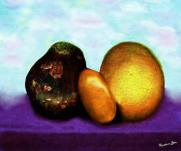 Wall Art - Photograph - Healthy Choices by Madeline Ellis