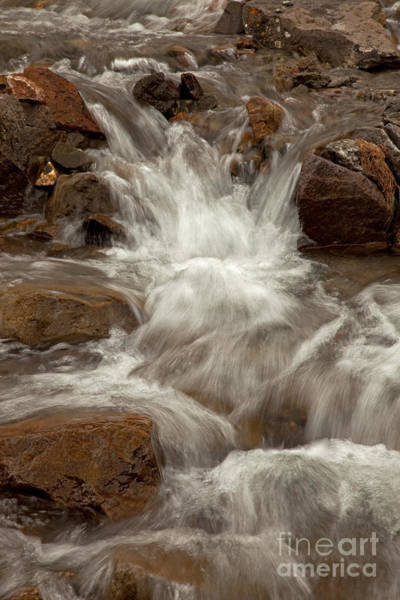 Photograph - Horseshoe Creek Along Engineer Pass Road by Fred Stearns