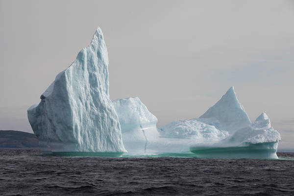Maritime Provinces Photograph - Icebergs, Kings Cove, Newfoundland by Greg Johnston