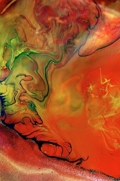Oil Paints Photograph - Ink Patterns In Water by Pery Burge/science Photo Library