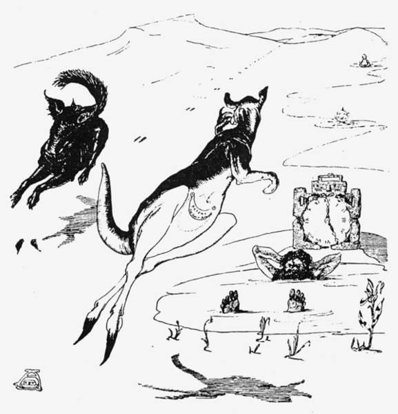 Kangaroo Drawing - Kipling Just So Stories by Granger