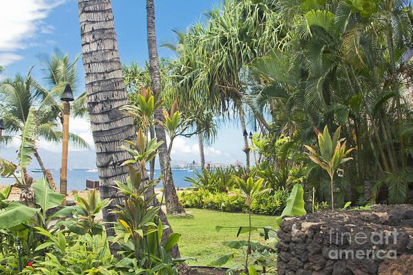 Photograph - Lahaina Maui Hawaii by Sharon Mau