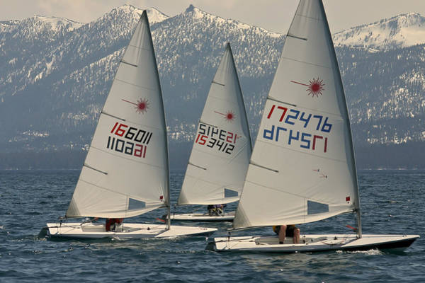 Photograph - Lake Tahoe Regatta by Steven Lapkin