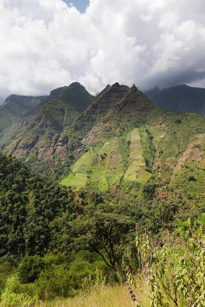 East Africa Wall Art - Photograph - Landscape In The Semien Mountains by Martin Zwick