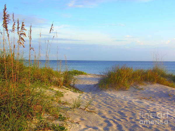 Wall Art - Photograph - Longboat Key Beach by Lou Ann Bagnall