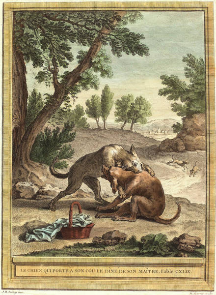 Chien Drawing - Martin Marvie After Jean Baptiste Oudry French by Litz Collection