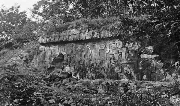 Stone Carving Photograph - Mayan Temple Ruins by American Philosophical Society