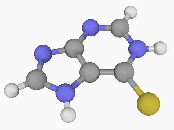 Wall Art - Photograph - Mercaptopurine Drug Molecule by Laguna Design/science Photo Library