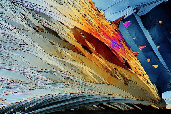 Pharmaceutics Wall Art - Photograph - Metformin Drug Crystals by Antonio Romero