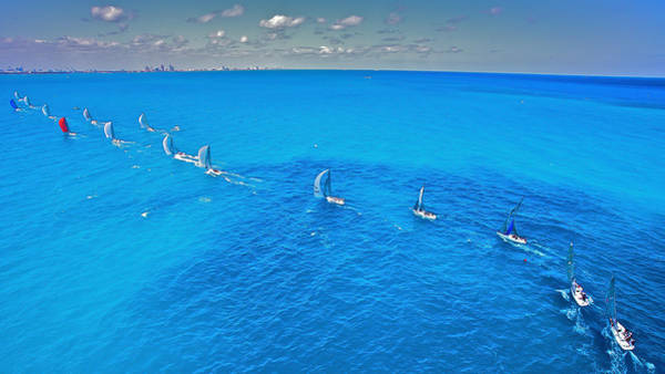Photograph - Miami Beach Regatta by Steven Lapkin