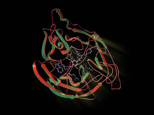 Neuraminidase Photograph - Neuraminidase by Hipersynteza