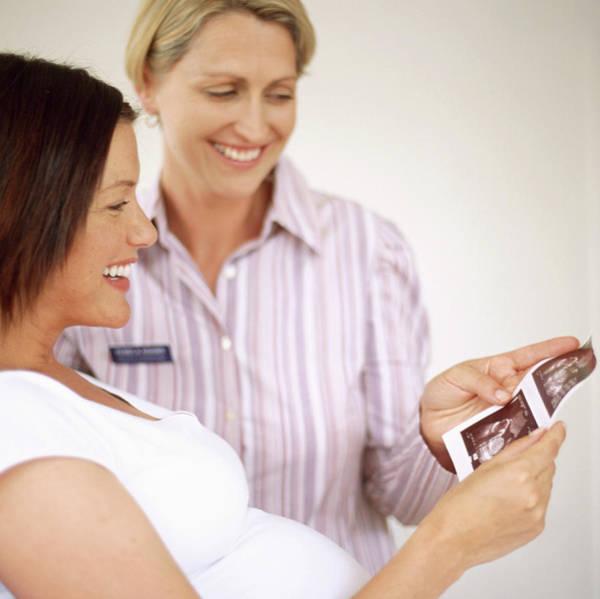 Pregnant Wall Art - Photograph - Obstetric Examination by Ian Hooton/science Photo Library