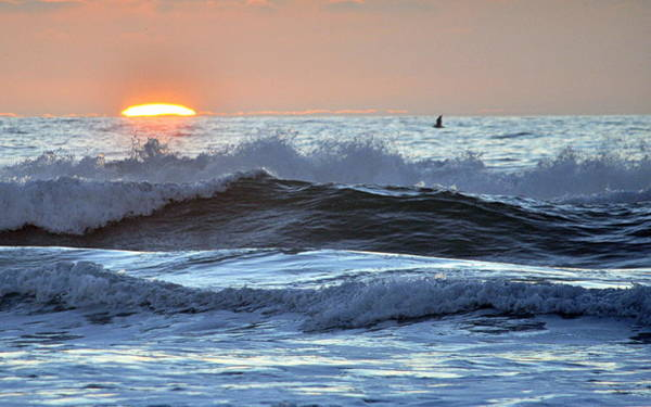 Photograph - Ocean Sunset by AJ  Schibig